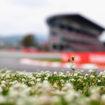 Info, orari e record: guida al GP di Spagna della F1