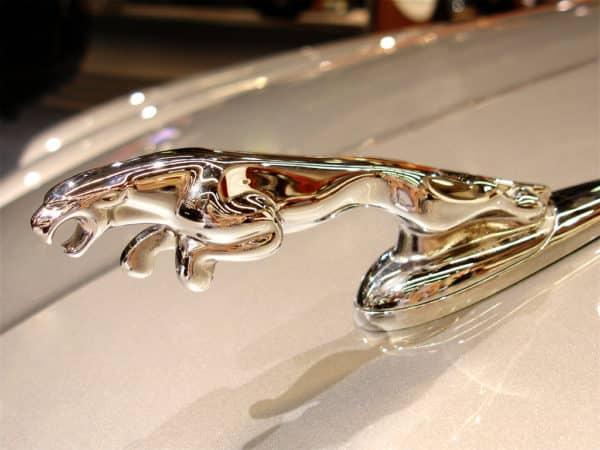 jaguar-logo8