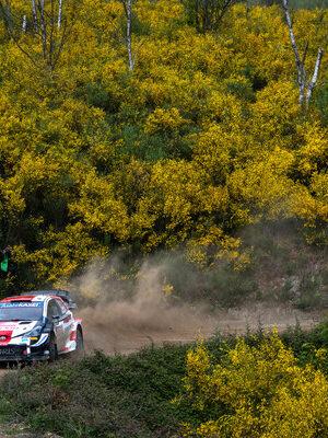 Rally di Portogallo: Elfyn Evans vince una gara dominata… dalle Hyundai