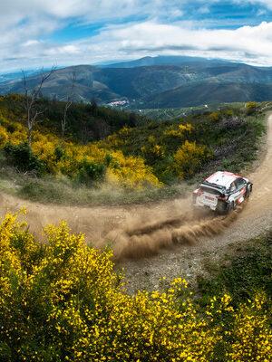 Harakiri Hyundai al Rally Portogallo: fuori anche Tanak, Evans passa al comando